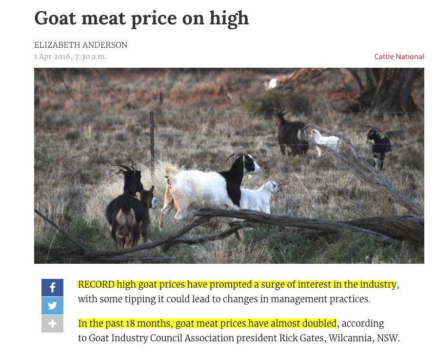 Why Raise Meat Goats? Ultimate Guide to Trends, Target