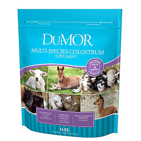 DuMOR Blue Ribbon Multi Colostrum Supplement