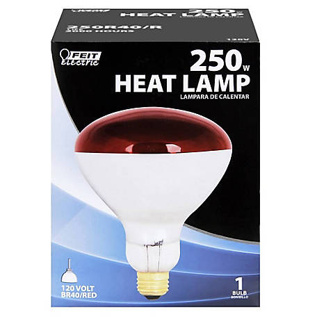 Feit Electric 250 watt Incandescent R40 Red Heat Lamp Reflector